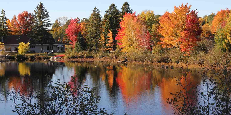 Background image of Appleton