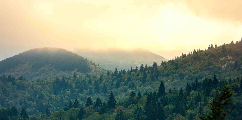 Background image of Asheville
