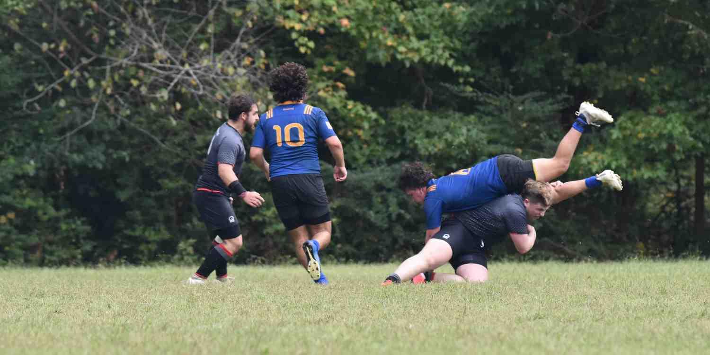 Background image of Charlotte
