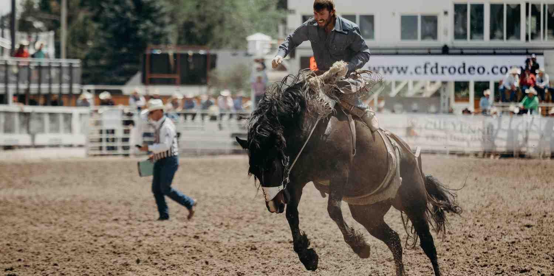 Background image of Cheyenne