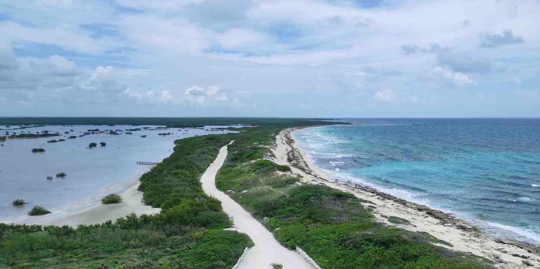 Background image of Cozumel