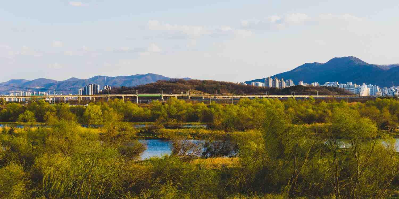 Background image of Daegu