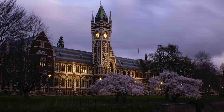 Background image of Dunedin