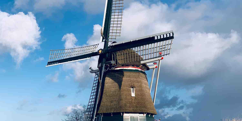 Background image of Haarlem