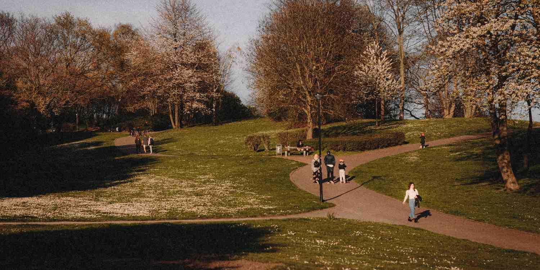 Background image of Hagen
