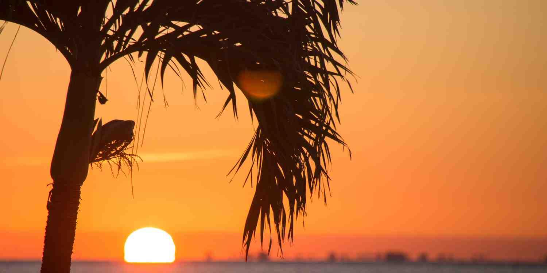 Background image of Key West