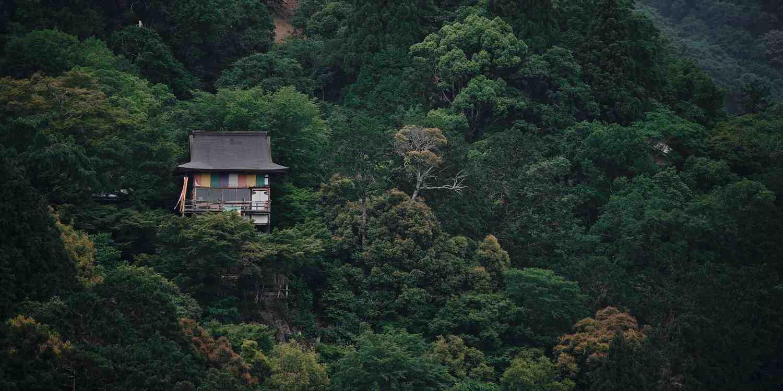 Background image of Nago
