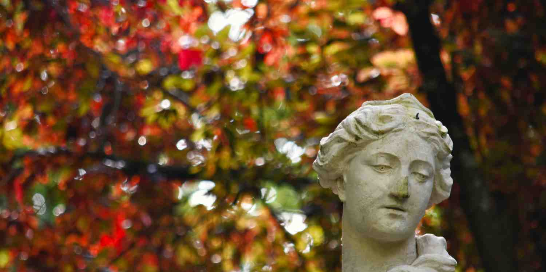 Background image of Pamplona