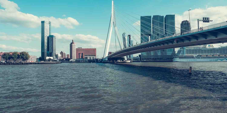 Background image of Rotterdam