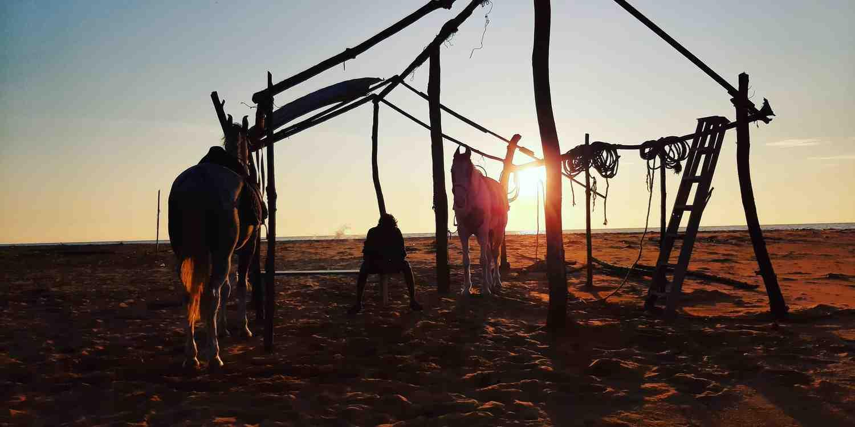 Background image of Thiruvananthapuram