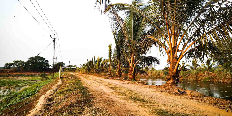Background image of Thrissur