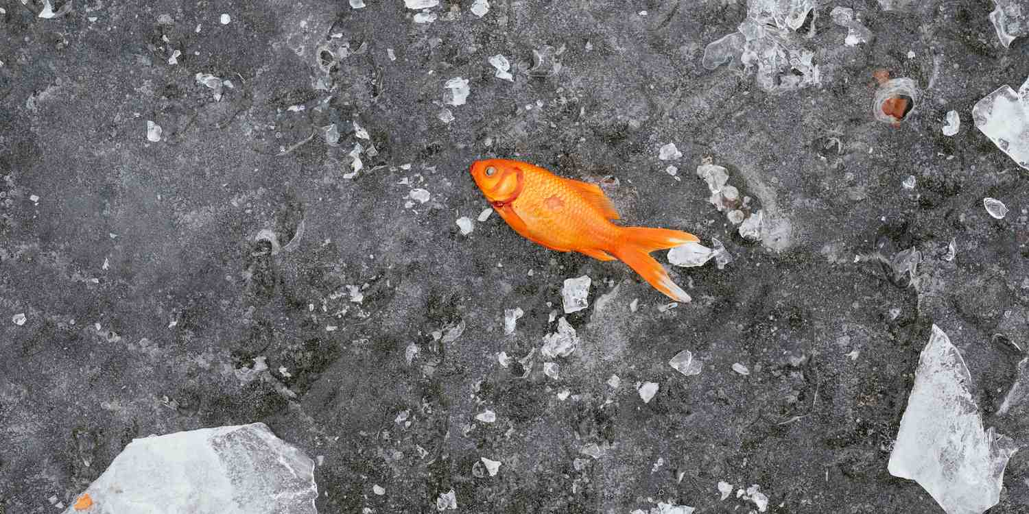 Background image of Tianjin
