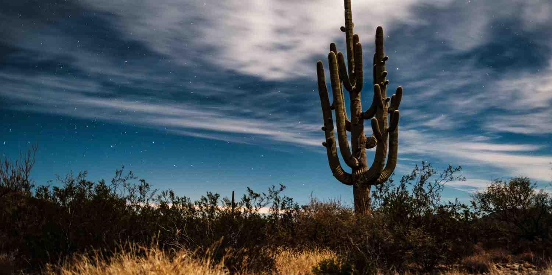 Background image of Tucson