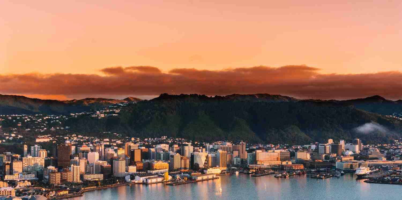 Background image of Wellington
