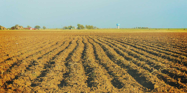 Background image of Amarillo