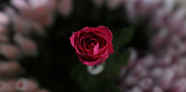Background image of Kunming